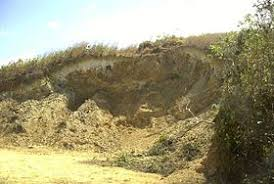 En la Argentina, se pierden 30 millones de dólares al año por erosión hídrica