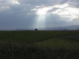 Prevén incremento térmico, acompañado por lluvias sobre extremo centro- oriental del área agrícola
