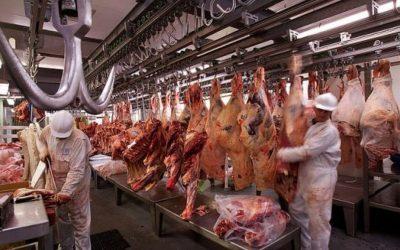 Demanda china: la carne vacuna ya se rige por fundamentos propios