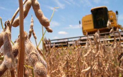 Avanzan a buen ritmo la cosecha de soja y la siembra del trigo