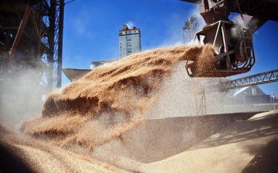 El INASE extiende y amplía la auditoría sobre producción de granos