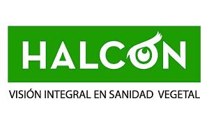 """Halcón Monitoreos propone considerar """"umbrales de manejo"""" frente a ataques de Bichos Bolita"""