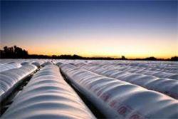 Mercado físico de granos: los productores tienen derecho a saber qué ocurre con su mercadería