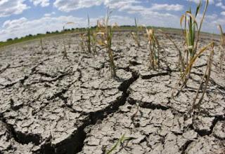 Cambio Climático: Así dejaríamos de perder 17.000 millones de dólares en la región