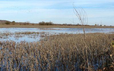 Luchando contra la Madre Naturaleza, el Gobierno y el poderoso Río Missouri