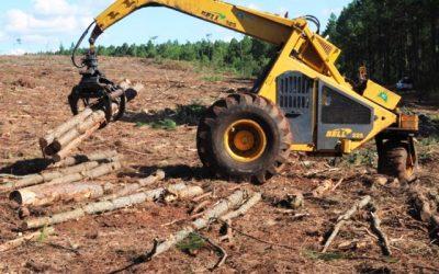 Agroindustria lanzó nuevo visualizador de extracciones forestales