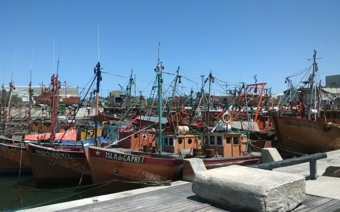 Enfoque pesquero en Mar del Plata