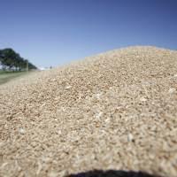 El 93% de los molinos de trigo adquirieron los controladores electrónicos