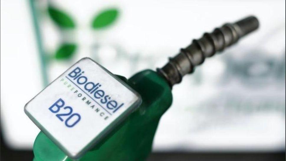 Biodiésel: La producción cayó 15% en los primeros 11 meses