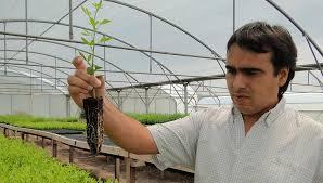 Ya funciona el Registro Nacional Único de Responsables Técnicos de Protección Vegetal