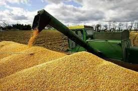 En 2019, las exportaciones de granos y derivados sumarán 6.400  millones de US$ más que en 2018