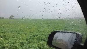 Prevén calor acompañado por precipitaciones sobre el norte del área agrícola