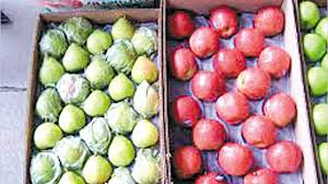 Duro golpe al Alto Valle: Brasil cerró completamente el ingreso de peras y manzanas argentinas