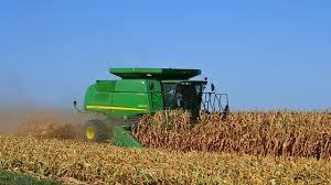 Esperan la mayor cosecha de soja y maíz de los últimos 10 años en la región núcleo