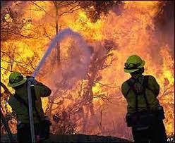 Profesionalización: combatientes de incendios rurales y forestales