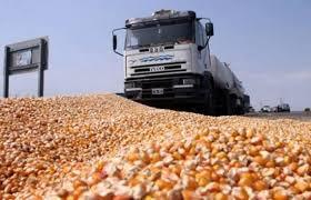 Jornada de precarios niveles de actividad en el mercado de granos local