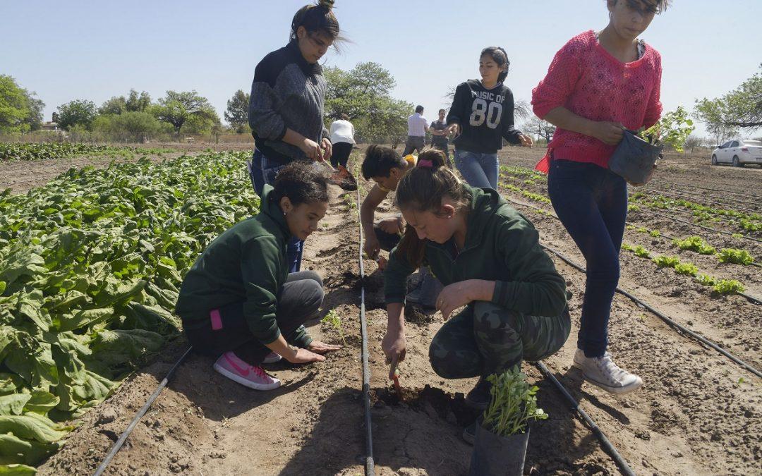 Escuelas rurales: dar clases frente a todo pronóstico