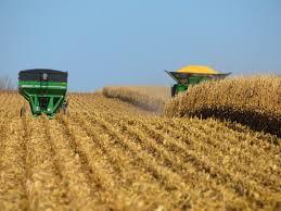 Los datos del USDA mueven los mercados de granos para abajo