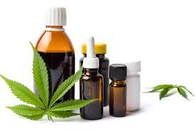 Tabacaleros incursionan en el Cannabis medicinal para diversificar la producción