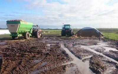 Alertan sobre impacto de las lluvias en la cosecha de soja de la principal zona del país