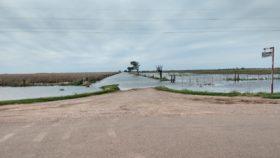 Por el cambio climático una zona que surgió con la soja ahora vive del trigo