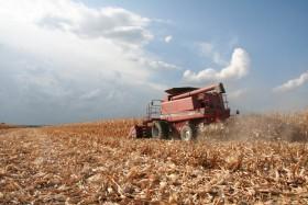 Empresarios que usaron tecnología comercial obtuvieron un ingreso adicional de 40 u$s por hectárea con el maíz temprano