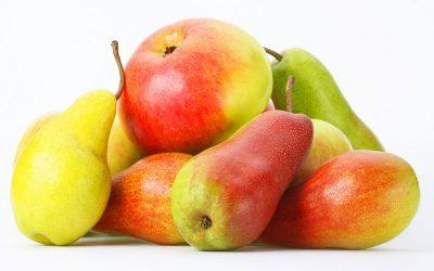 Extienden hasta julio beneficios para productores de peras y manzanas en cinco provincias