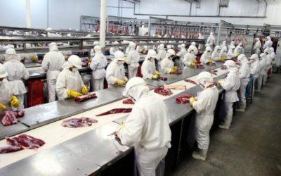 Para el Gobierno, el consumo de proteínas animales se mantiene estable a pesar de la crisis económica