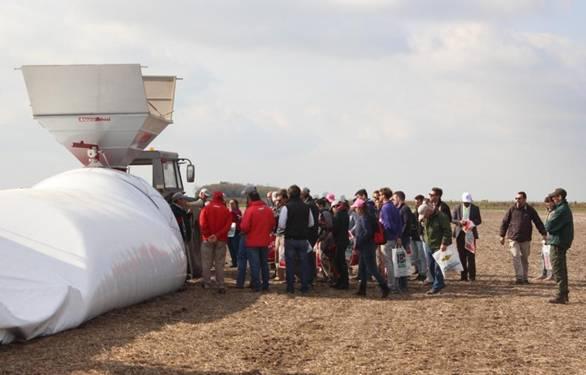 Poscosecha de granos en silo bolsa