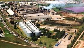 Aumentaron 6,5% exportaciones del complejo sojero en un año