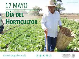 Hoy se celebra el Día del Horticultor