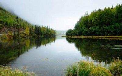 Apenasun tercio de los ríos más largos del mundo fluyen libremente, revela estudio publicado enNature