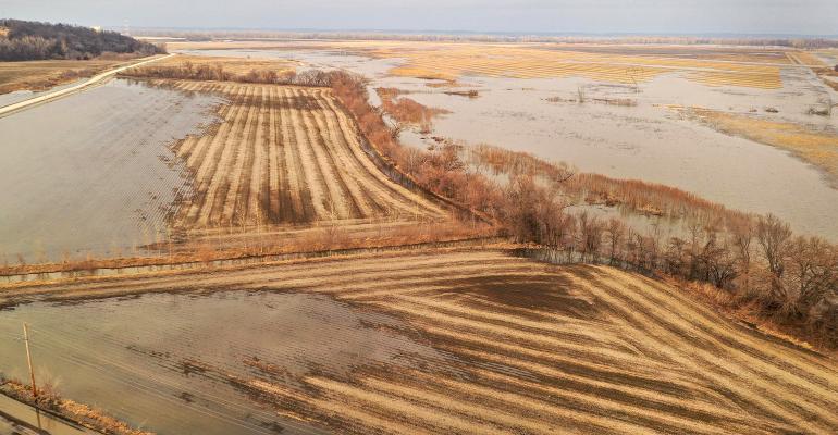 El maíz alcanza su nivel más alto de los últimos 5 años gracias a la incertidumbre de los cultivos y a la firmeza de la liquidez