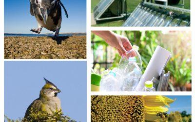 Convocatoria del Fondo para la Conservación Ambiental