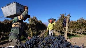 Cadena vitivinícola advierte perjuicio de de un acuerdo de libre comercio entre Mercosur y la Unión Europea con arancel cero