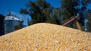 La Agroindustria bonaerense mostró índices destacados en el primer cuatrimestre del año