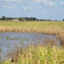 El Gobierno entregó 87 millones de la emergencia a la provincia del Chaco