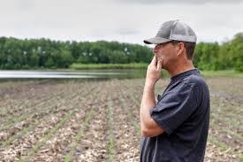 """Argentina es el país con políticas agropecuarias """"más distorsivas"""", según la OCDE"""