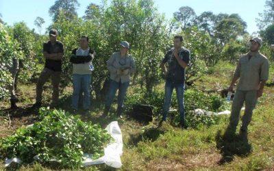 El RENATRE capacitó más de 300 trabajadores rurales y productores de la actividad yerbatera