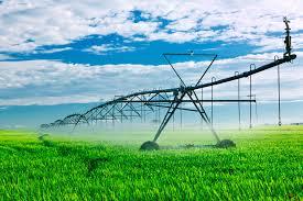 La agricultura utiliza casi el 40% de las tierras del planeta