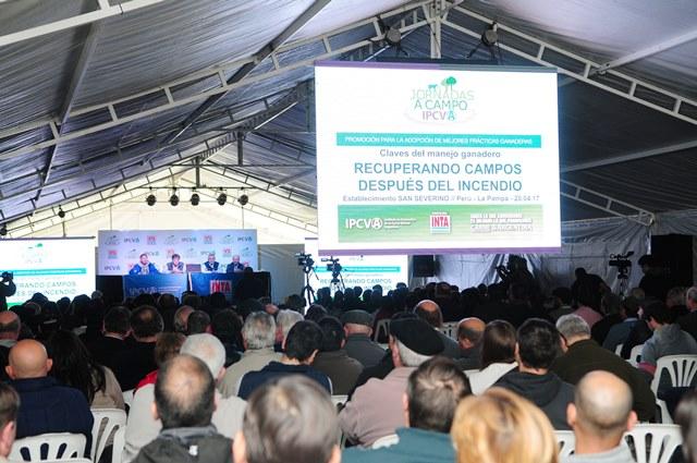 Más de 350 productores participaron en el seminario ganadero del IPCVA en La Pampa