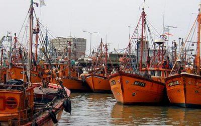 Crecieron los desembarques de productos pesqueros en puertos de la Provincia de Buenos Aires