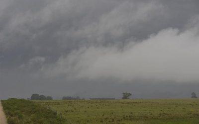 Prevén precipitaciones escasas a moderadas, acompañadas de irrupción de aire polar, en el área agrícola