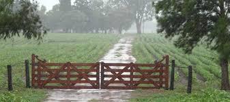 Prevén ascenso térmico y precipitaciones en el nordeste, el centro-este y sudoeste del área agrícola