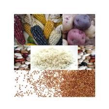 La FAO trabaja con Argentina en la conservación de cultivos alimentarios