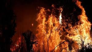 La Amazonia sigue ardiendo antes de la reunión de ONU