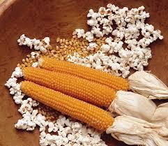 Las operaciones del mayor exportador mundial de maíz pisingallo peligran por una medida arbitraria que ya había sido implementada (sin éxito) en 2012