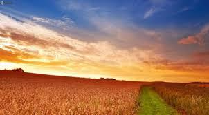 Prevén marcado incremento de la temperatura, con lluvias sobre el centro-este del área agrícola