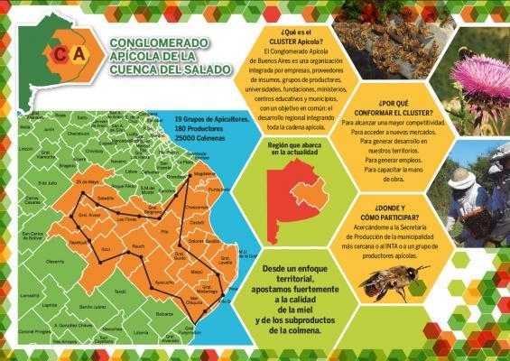 Identifican oportunidades para el cluster apícola de la Cuenca del Salado