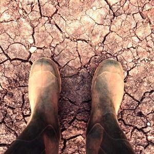 Para prevenir el próximo Dust Bowl, dele una oportunidad al  suelo